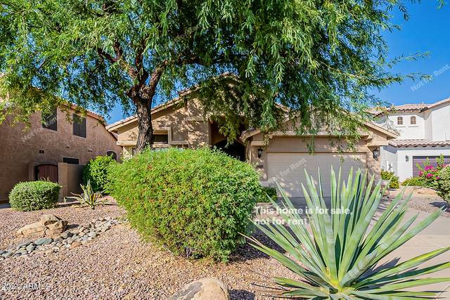29405 N 48TH Place, Cave Creek, AZ 85331 (MLS #6310280) :: Arizona Home Group
