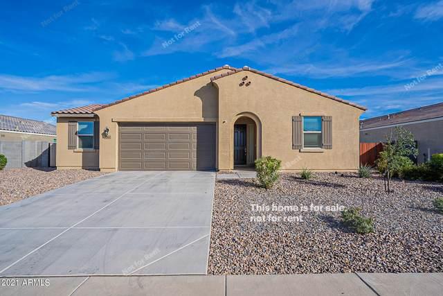 7146 E Morning Dove Lane, San Tan Valley, AZ 85143 (MLS #6310285) :: Keller Williams Realty Phoenix