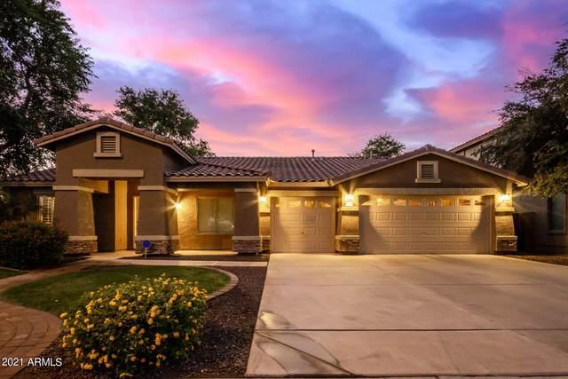 4266 S Lindl Drive, Chandler, AZ 85249 (MLS #6310288) :: Keller Williams Realty Phoenix