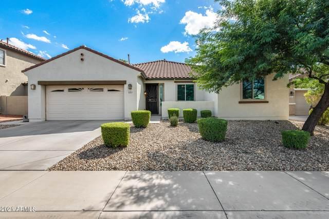 2217 W Alicia Drive, Phoenix, AZ 85041 (MLS #6310294) :: Keller Williams Realty Phoenix