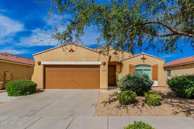 882 E Riviera Place, Chandler, AZ 85249 (MLS #6310329) :: Dave Fernandez Team | HomeSmart