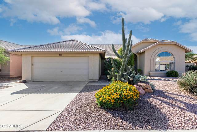 4209 E Thistle Landing Drive, Phoenix, AZ 85044 (MLS #6310337) :: Yost Realty Group at RE/MAX Casa Grande