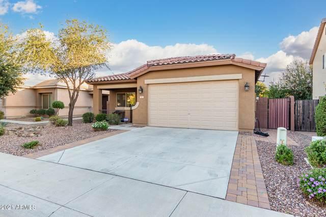 741 W Harvest Road, Queen Creek, AZ 85140 (MLS #6310361) :: Dave Fernandez Team   HomeSmart