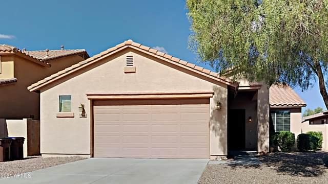 566 E Harvest Road, San Tan Valley, AZ 85140 (MLS #6310365) :: Keller Williams Realty Phoenix
