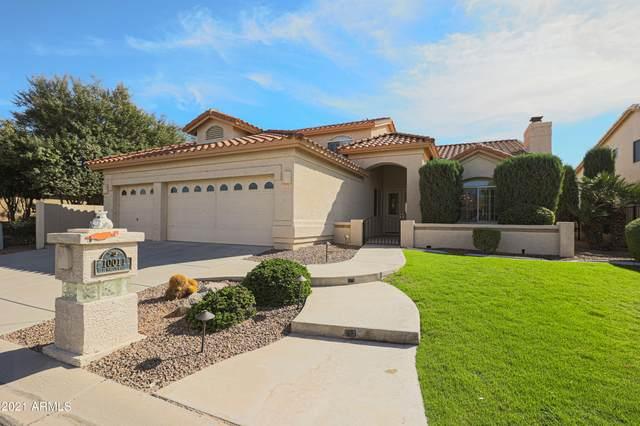10011 E Nacoma Court, Sun Lakes, AZ 85248 (MLS #6310369) :: Midland Real Estate Alliance