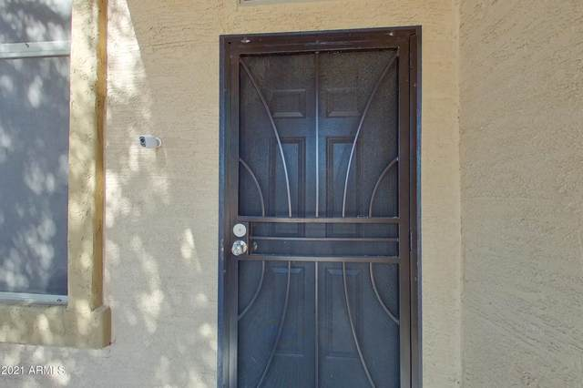 10648 E Marigold Lane, Florence, AZ 85132 (MLS #6310372) :: Keller Williams Realty Phoenix