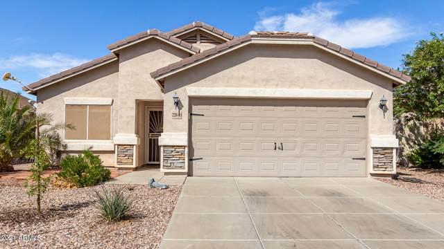 22640 W Cocopah Street, Buckeye, AZ 85326 (MLS #6310381) :: Dave Fernandez Team | HomeSmart
