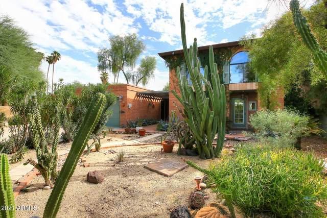6033 E Carnation Circle, Phoenix, AZ 85018 (MLS #6310386) :: Dave Fernandez Team | HomeSmart