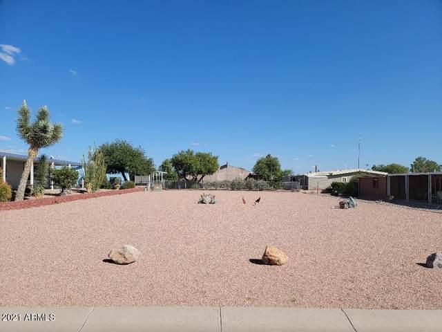 3803 N Iowa Avenue, Florence, AZ 85132 (MLS #6310398) :: Dave Fernandez Team | HomeSmart