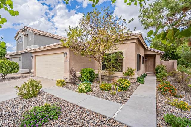 2636 E Gary Way, Phoenix, AZ 85042 (MLS #6310455) :: CANAM Realty Group