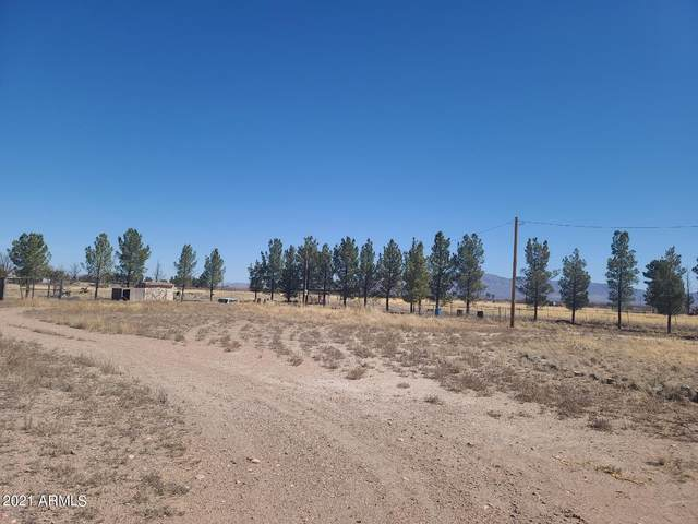 4272 W Desert Lily Lane, McNeal, AZ 85617 (MLS #6310456) :: Dave Fernandez Team | HomeSmart