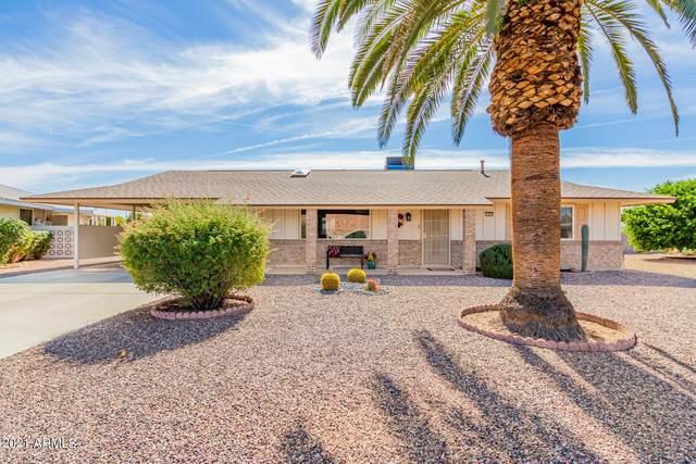 13813 N 103RD Way, Sun City, AZ 85351 (MLS #6310457) :: The AZ Performance PLUS+ Team