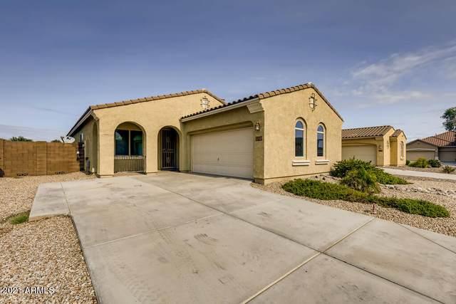878 W Ayrshire Trail, San Tan Valley, AZ 85143 (MLS #6310476) :: Keller Williams Realty Phoenix