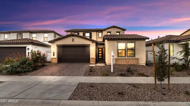 9730 E Resistance Avenue, Mesa, AZ 85212 (MLS #6310483) :: Keller Williams Realty Phoenix