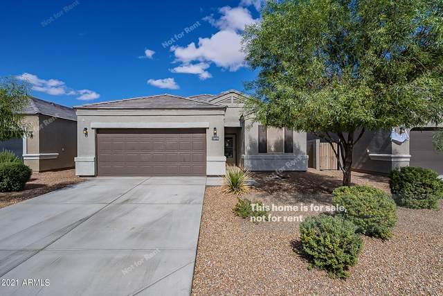 36950 W Maddaloni Avenue, Maricopa, AZ 85138 (MLS #6310486) :: Midland Real Estate Alliance