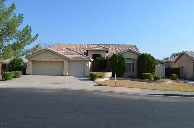 3624 E Encinas Avenue, Gilbert, AZ 85234 (MLS #6310493) :: Keller Williams Realty Phoenix