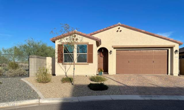 26541 N 122ND Drive, Peoria, AZ 85383 (MLS #6310502) :: Dave Fernandez Team | HomeSmart