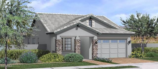 3926 E Spring Wheat Lane, Gilbert, AZ 85296 (MLS #6310517) :: Dave Fernandez Team | HomeSmart