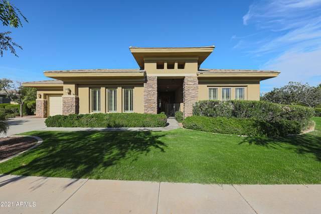 20670 W Founder Circle, Buckeye, AZ 85396 (MLS #6310535) :: Keller Williams Realty Phoenix