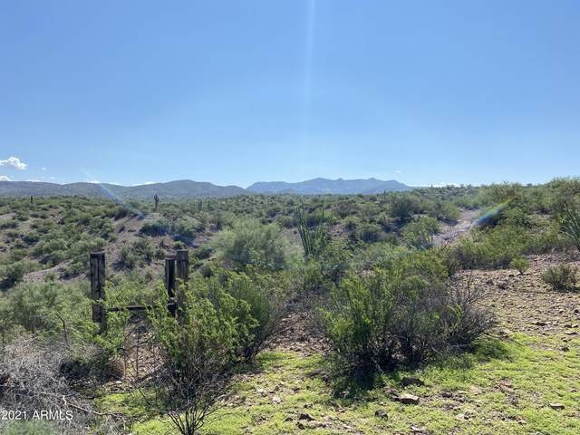 109xx N Springfield Road, Winkelman, AZ 85192 (MLS #6310550) :: Arizona Home Group