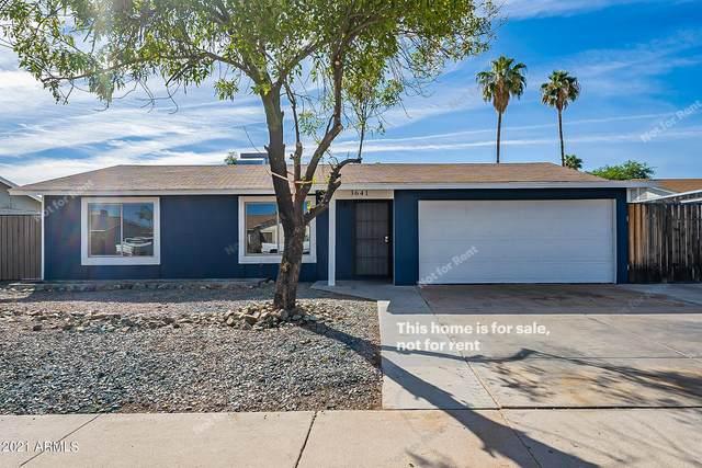3641 W Oakland Street, Chandler, AZ 85226 (MLS #6310598) :: Keller Williams Realty Phoenix