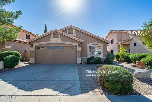 20408 N 17TH Place, Phoenix, AZ 85024 (MLS #6310604) :: The Newman Team