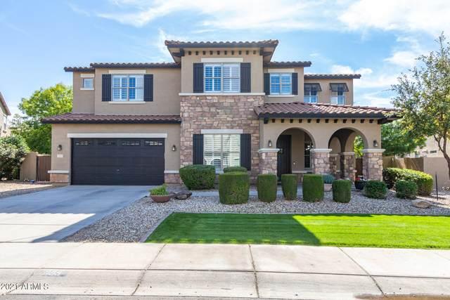 3105 E Castanets Drive, Gilbert, AZ 85298 (MLS #6310619) :: Dave Fernandez Team | HomeSmart