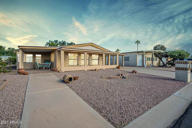 9104 E Olive Lane N, Sun Lakes, AZ 85248 (MLS #6310654) :: Midland Real Estate Alliance