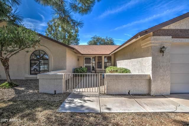 14135 W Yosemite Drive W, Sun City West, AZ 85375 (MLS #6310683) :: The Newman Team