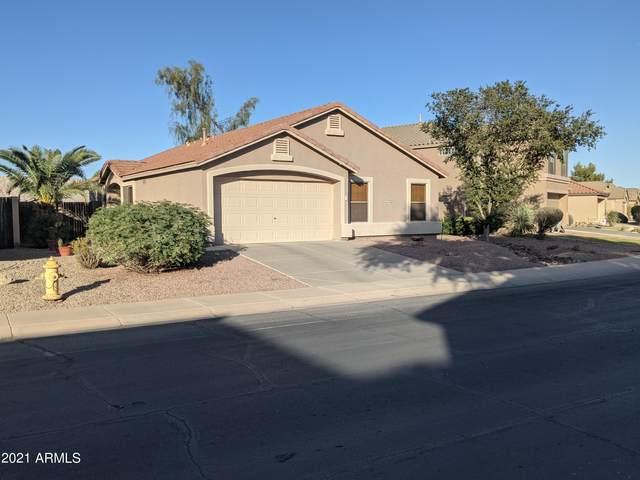 43784 W Rio Lobo Drive W ., Maricopa, AZ 85138 (MLS #6310690) :: Midland Real Estate Alliance