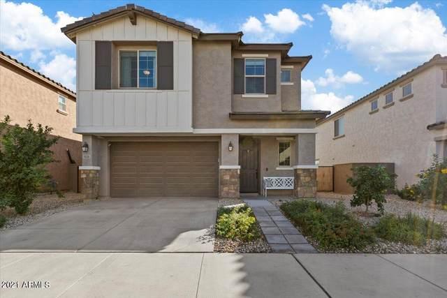 9539 E Trillium Avenue, Mesa, AZ 85212 (MLS #6310699) :: Arizona Home Group