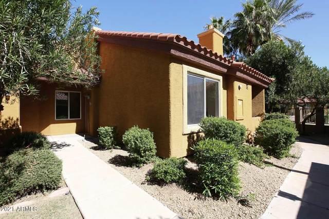 2929 W Yorkshire Drive #1008, Phoenix, AZ 85027 (MLS #6310714) :: Dave Fernandez Team | HomeSmart