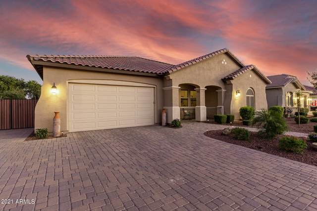 987 W Alpine Tree Avenue, Queen Creek, AZ 85140 (MLS #6310723) :: Dave Fernandez Team   HomeSmart