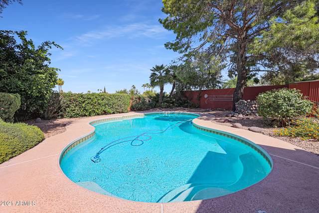 2916 E Las Rocas Drive, Phoenix, AZ 85028 (MLS #6310748) :: The Newman Team