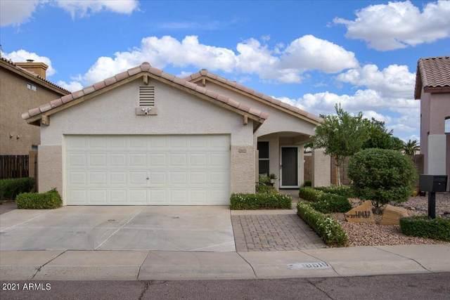 18619 N 39TH Way, Phoenix, AZ 85050 (MLS #6310749) :: Yost Realty Group at RE/MAX Casa Grande