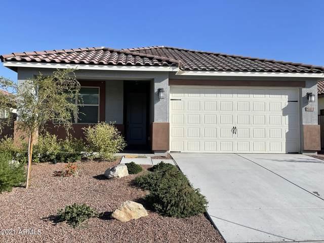 8411 S 164TH Drive, Goodyear, AZ 85338 (MLS #6310751) :: The Garcia Group