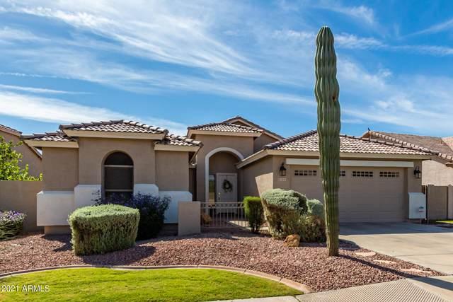 13141 W Stella Lane, Litchfield Park, AZ 85340 (MLS #6310776) :: Hurtado Homes Group