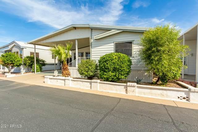111 S Greenfield Road, Mesa, AZ 85206 (MLS #6310782) :: Maison DeBlanc Real Estate