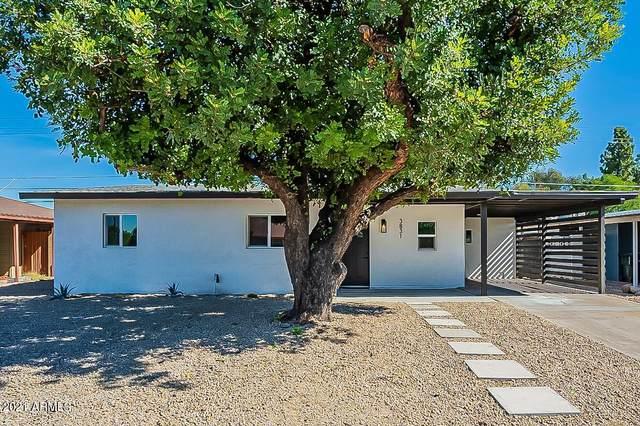 3831 N 8TH Avenue, Phoenix, AZ 85013 (MLS #6310788) :: Dave Fernandez Team | HomeSmart