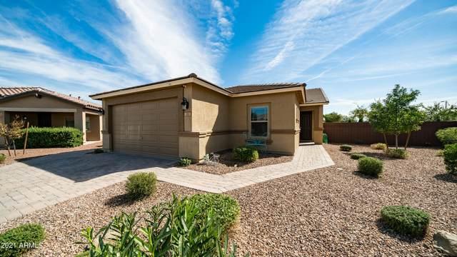 765 W Whistling Thorn Avenue, San Tan Valley, AZ 85140 (MLS #6310792) :: The Newman Team