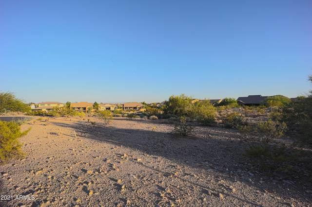 21273 W Sage Hill Court, Buckeye, AZ 85396 (MLS #6310803) :: D & R Realty LLC