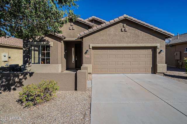20926 E Via Del Palo, Queen Creek, AZ 85142 (MLS #6310829) :: Dave Fernandez Team   HomeSmart