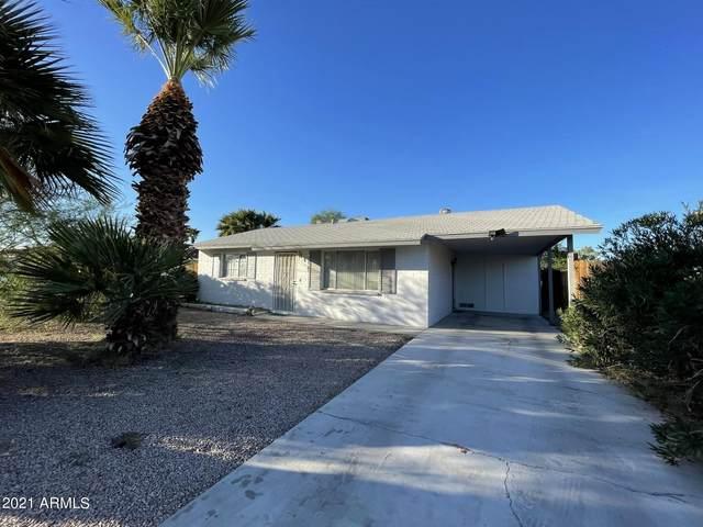 6436 E Arbor Avenue, Mesa, AZ 85206 (MLS #6310850) :: Keller Williams Realty Phoenix