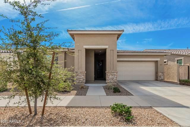 22541 E Stonecrest Drive, Queen Creek, AZ 85142 (MLS #6310855) :: Dave Fernandez Team | HomeSmart