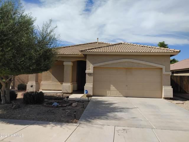 1684 S 172ND Drive, Goodyear, AZ 85338 (MLS #6310887) :: Elite Home Advisors