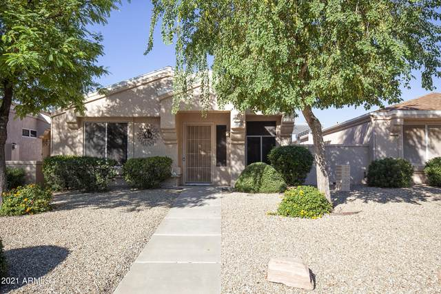 18614 N 136TH Drive, Sun City West, AZ 85375 (MLS #6310902) :: Long Realty West Valley