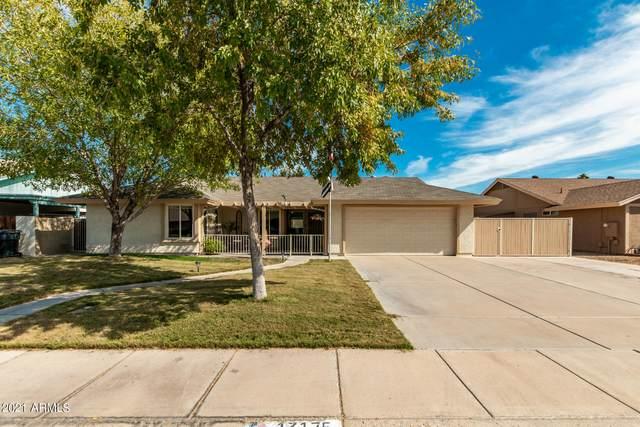 13175 N 81st Avenue, Peoria, AZ 85381 (MLS #6310915) :: Arizona Home Group