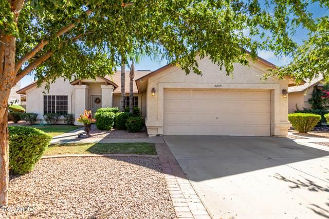 4233 E Briarwood Terrace, Phoenix, AZ 85048 (MLS #6310917) :: Arizona Home Group
