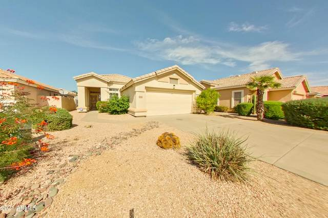 13130 W Alvarado Circle, Goodyear, AZ 85395 (MLS #6310922) :: Arizona Home Group