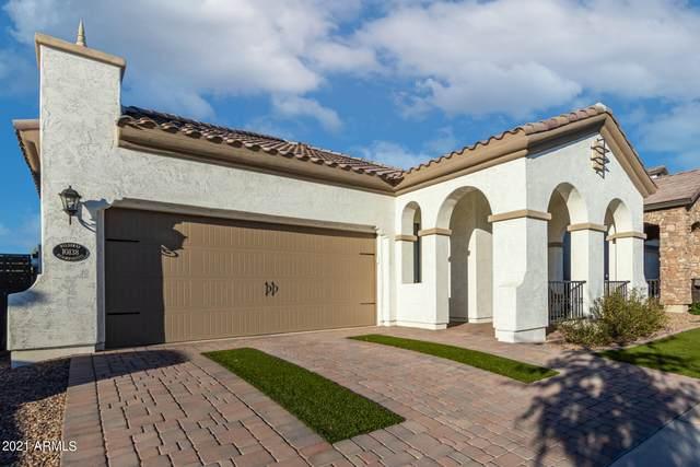 10138 E Nichols Avenue, Mesa, AZ 85209 (MLS #6310958) :: Dave Fernandez Team | HomeSmart
